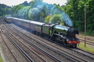 Flying Scotsman near Woking, Andy Crawley